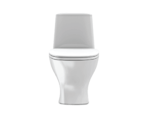 TZ-Web-Toilet-t